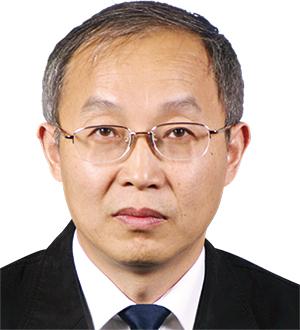 Prof. Dr Tong Zhang